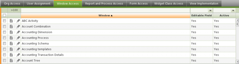 File:Window Access Tab.png
