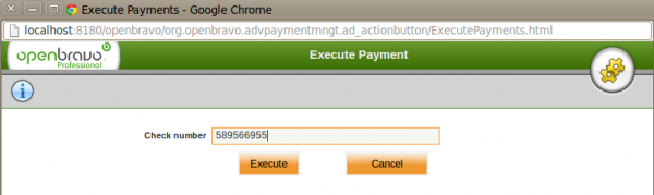 Payment Execution Execute.png