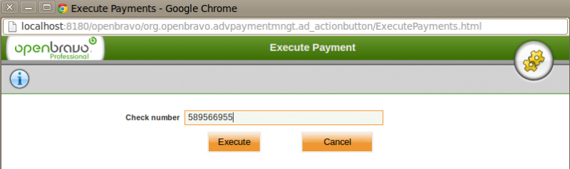 File:Payment Execution Execute.png